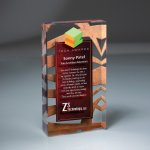 Lucite Infusion Embedded Imprint Employee Awards