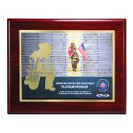 Choice of Digi-Color Plate on Deluxe Board Sales Awards
